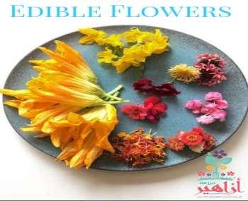 الزهور الصالحة للأكل